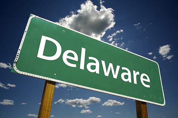Delaware bug sweep company