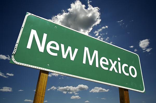 New Mexico Bug Sweep Company